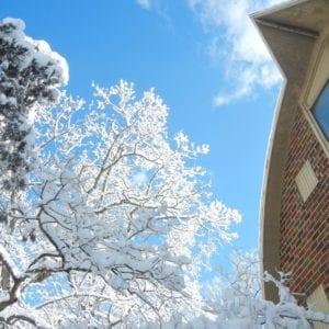 ICNC-Winter-barn