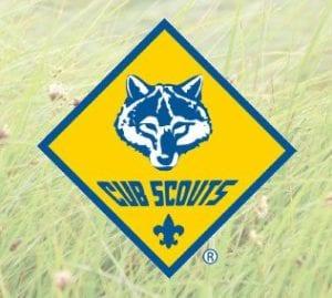 ICNC-cub-scout-logo