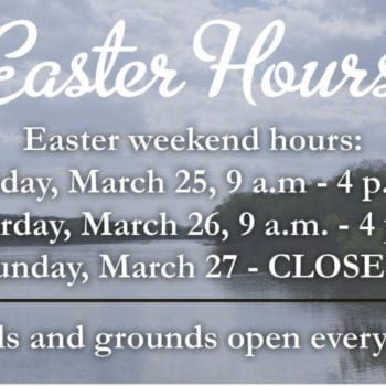 Easter Hours graphic2 3-23-16