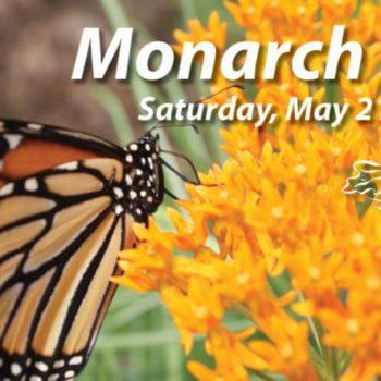 Monarch Fest 2016 image4