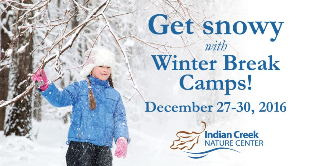winter-break-camps-image