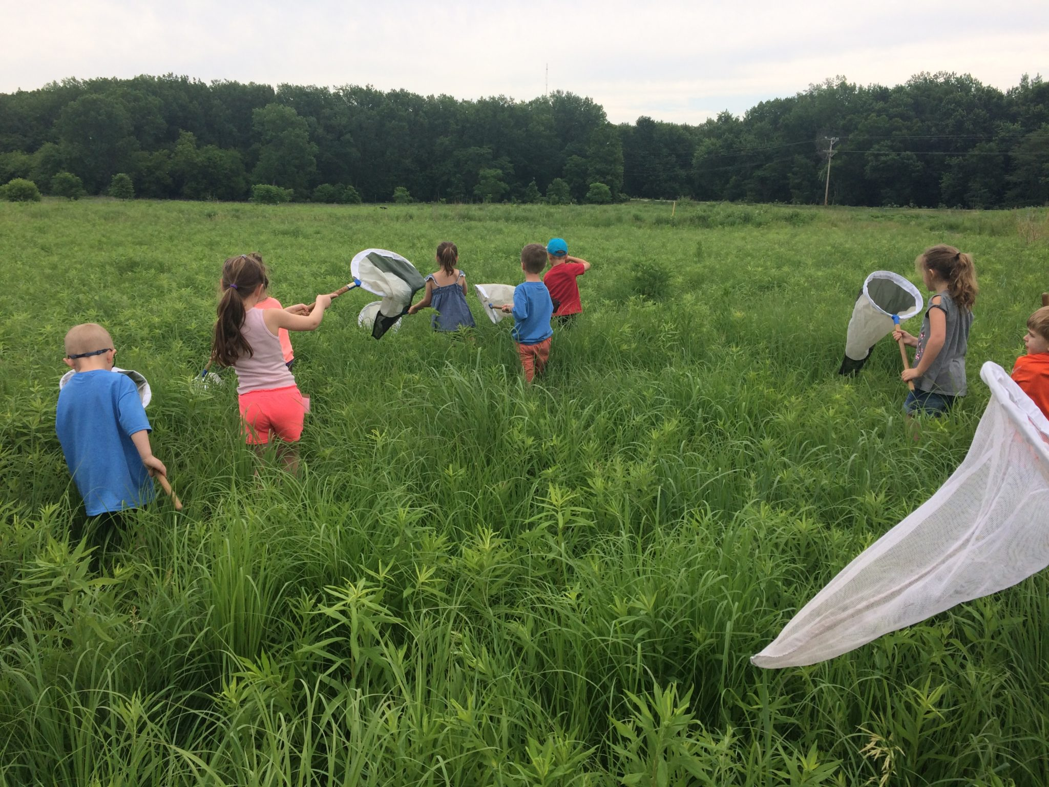 Summer Camps – Indian Creek Nature Center